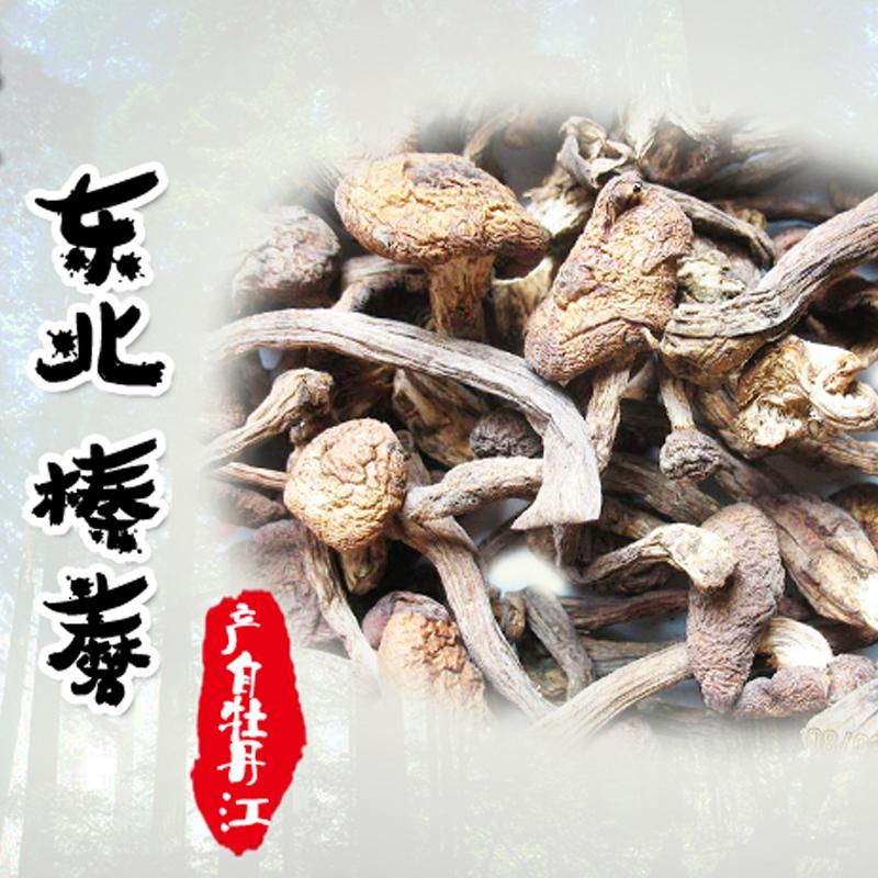 东北野生榛蘑 东北特产 小鸡炖蘑菇