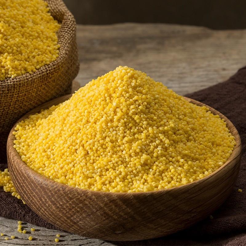 东北黄小米新米 月子米小黄米小米粥 老农帝国黄小米250g 2.5kg 满2.5公斤包邮