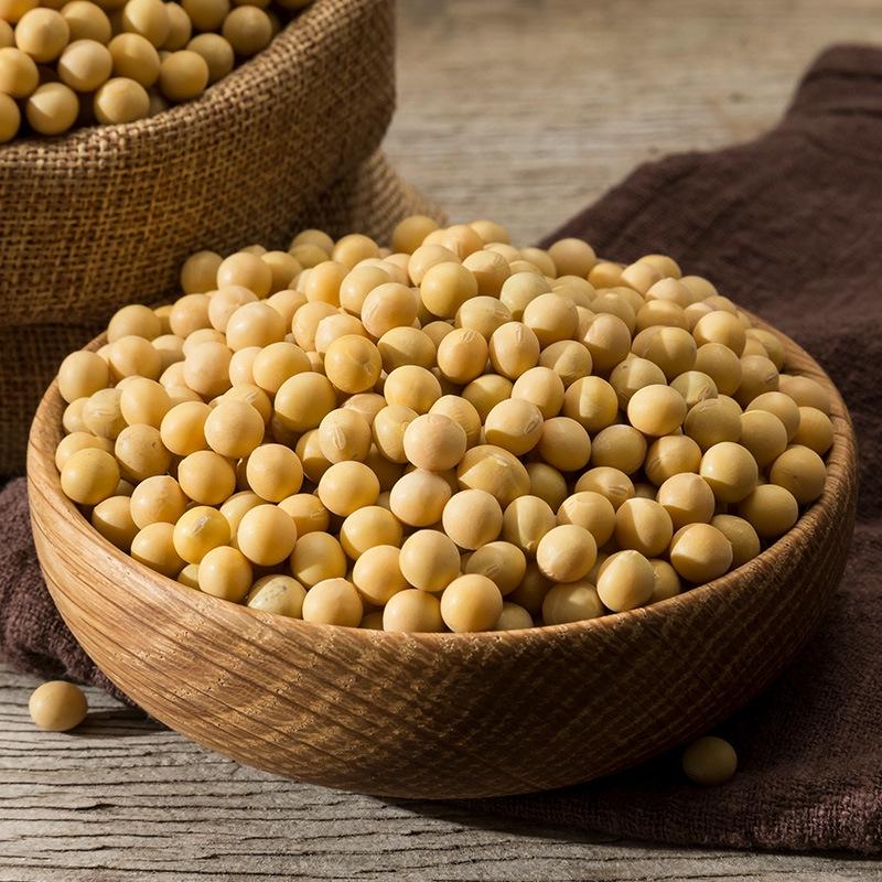 东北小黄豆新豆 非转基因大豆打豆浆生豆芽 老农帝国黄豆250g 2.5kg